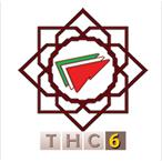 6th International Tehran Hepatitis Conference - 1st Global Hepatitis Community Meeting